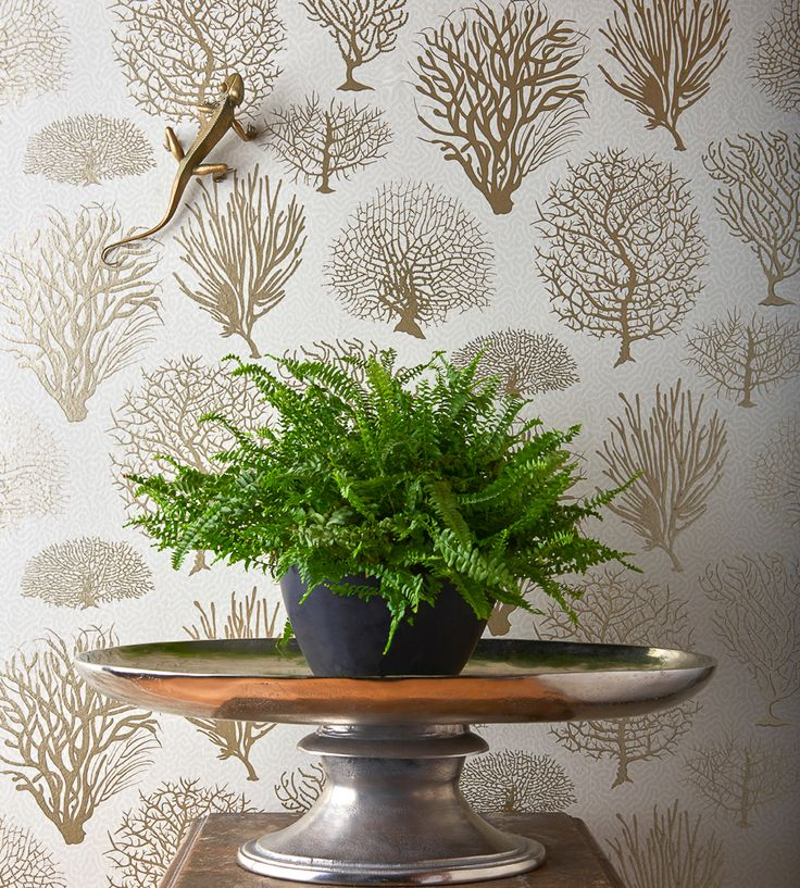 Design Classics | Nautical | Seafern Wallpaper by Cole & Son | Jane Clayton