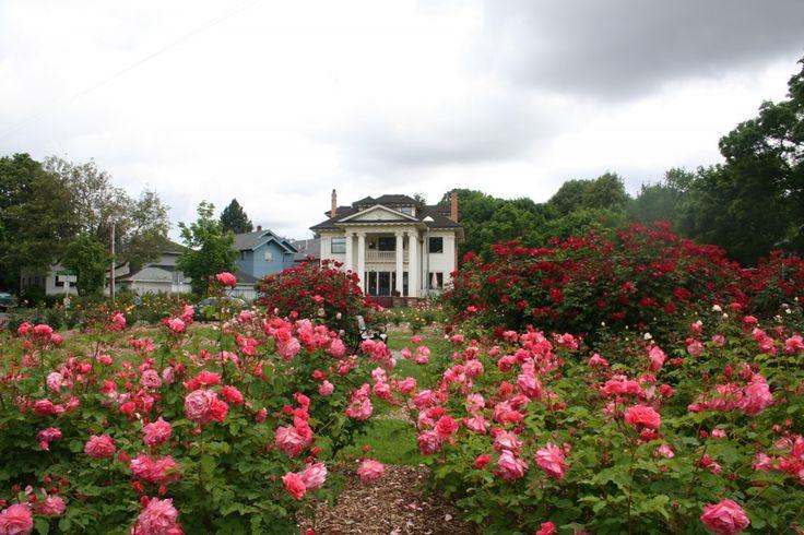 Portland Neighborhood Guide: Ladd's Addition   Portland Travel Tips