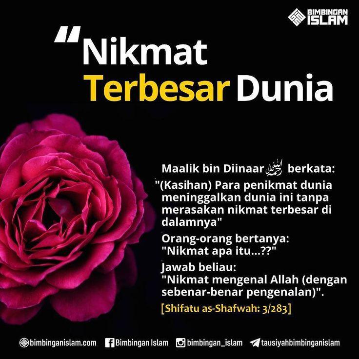 http://nasihatsahabat.com #nasihatsahabat #mutiarasunnah #motivasiIslami #petuahulama #hadist #hadits #nasihatulama #fatwaulama #akhlak #akhlaq #sunnah  #aqidah #akidah #salafiyah #Muslimah #adabIslami #DakwahSalaf # #ManhajSalaf #Alhaq #Kajiansalaf  #dakwahsunnah #Islam #ahlussunnah  #sunnah #tauhid #dakwahtauhid #alquran #kajiansunnah #keutamaan #fadhilah #NikmatTerbesardiDunia-#KenalAllah #mengenalAllah #SebenarBenarPengenalan