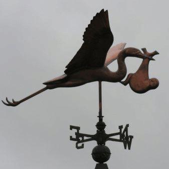 Stork weathervane indicates direction Utrecht !