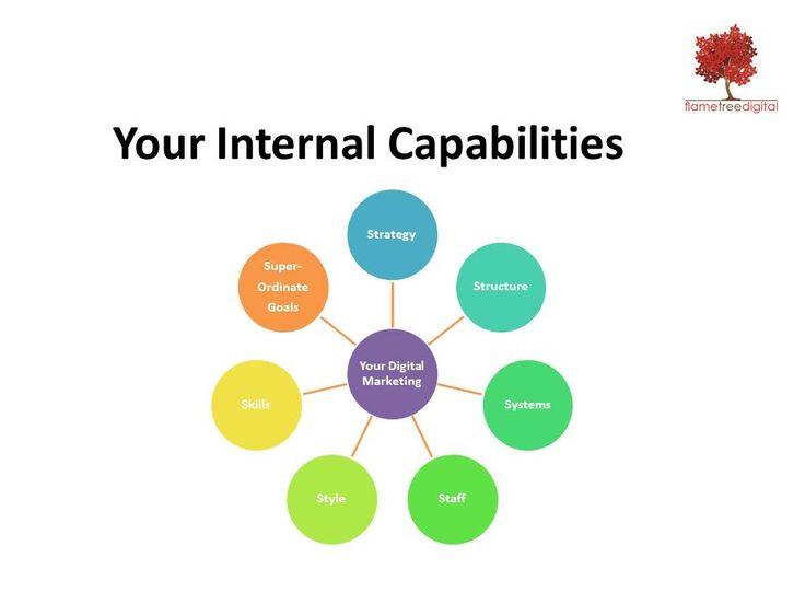 The Flame Tree Digital Audit considers your businesses internal digital marketing capabilities