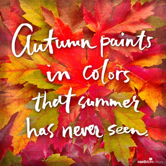Autumn paints in colors that summer has never seen!: