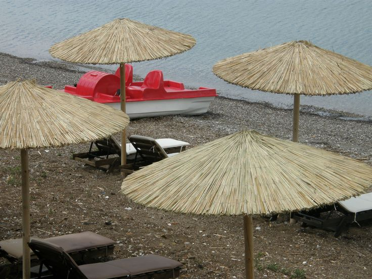 Tree Bar, all day beach bar in Patras, Greece.