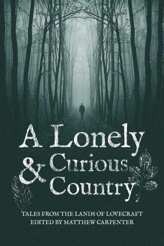 """A Lonely And Curious Country""  ***  Matthew Carpenter  (2015)"
