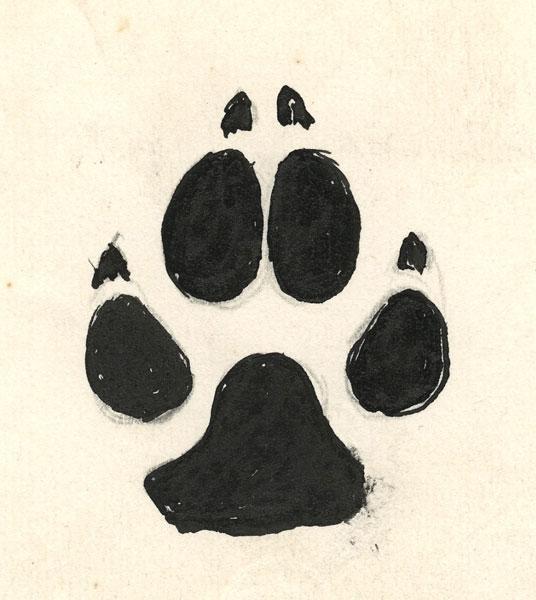 Wrist Henna Tattoo Pinterest Sheridanblasey: Wolf Paw Print