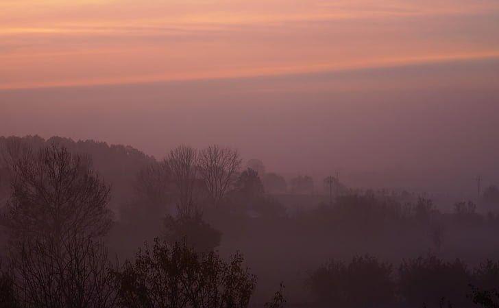 27 Gambar Pemandangan Fajar Foto Gratis Kabut Fajar Matahari Terbit Di Pagi Hari Pagi Download Gambar Pemandangan Horison Awan Ma In 2020 Sunset Celestial Outdoor
