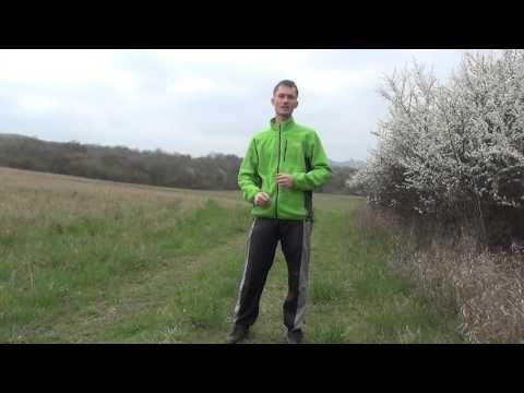 Co je důležité cvičit pro zdraví v květnu? Cviky pro zdravé srdce. - YouTube
