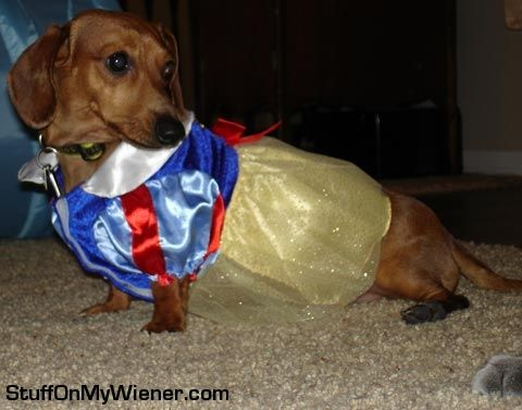 Pebbles dressed up as her favorite princess Snow White.