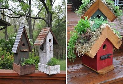 l'ortodimichelle: Casa con orto per uccellini***Research for possible future project.