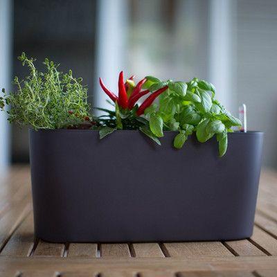 17 Best Ideas About Plastic Planter Boxes On Pinterest
