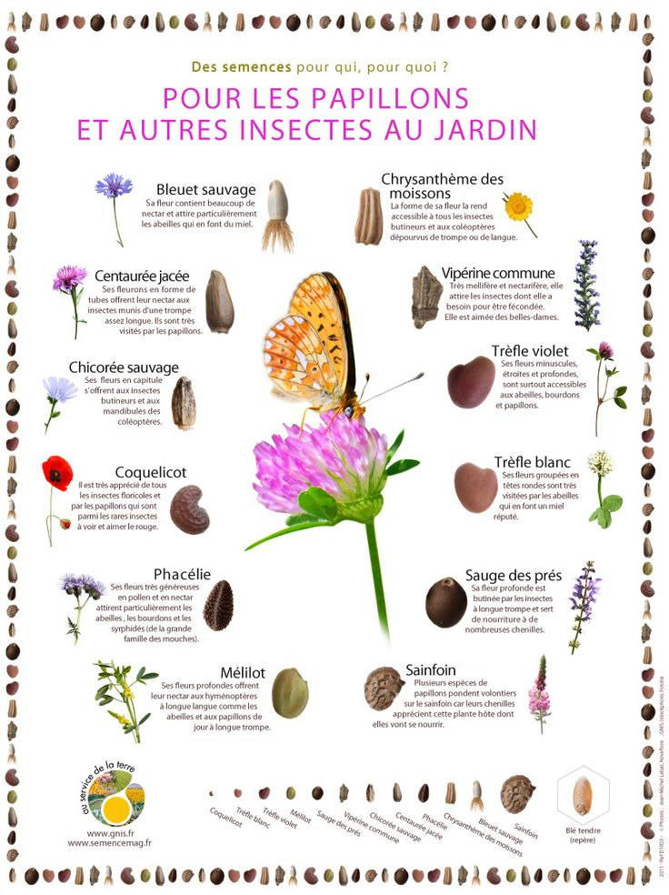 77 best Jardin images on Pinterest Veil, Outdoor living and - Ou Trouver De La Terre De Jardin