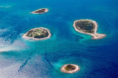 Brioni Islands unmissable excursion from Pula...