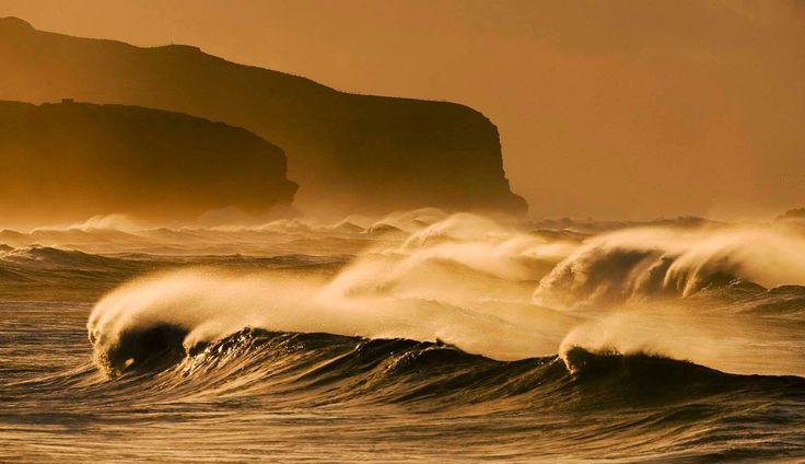 Dunedin - waves rolling in