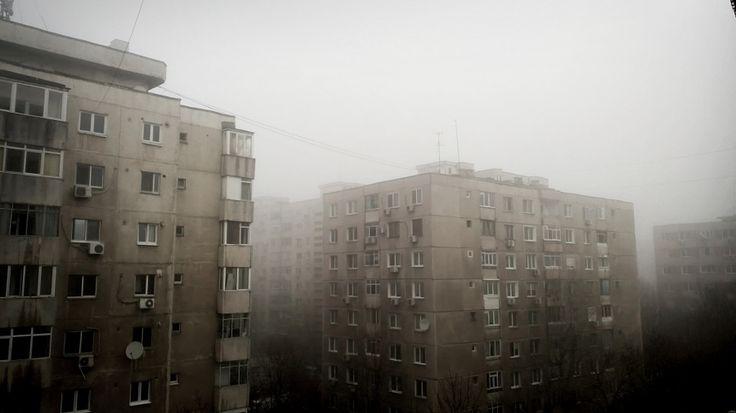 Foggy mornin'