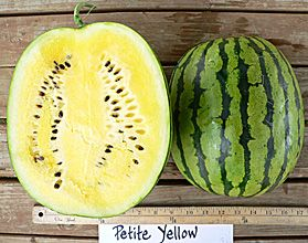 ... FAMILY CROPS on Pinterest | Watermelon, Watermelon Flower and Yellow