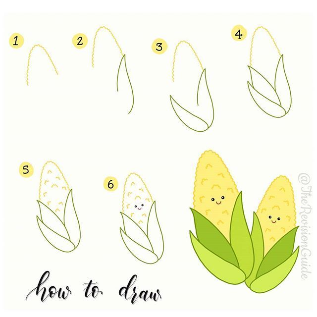how to draw corn easy