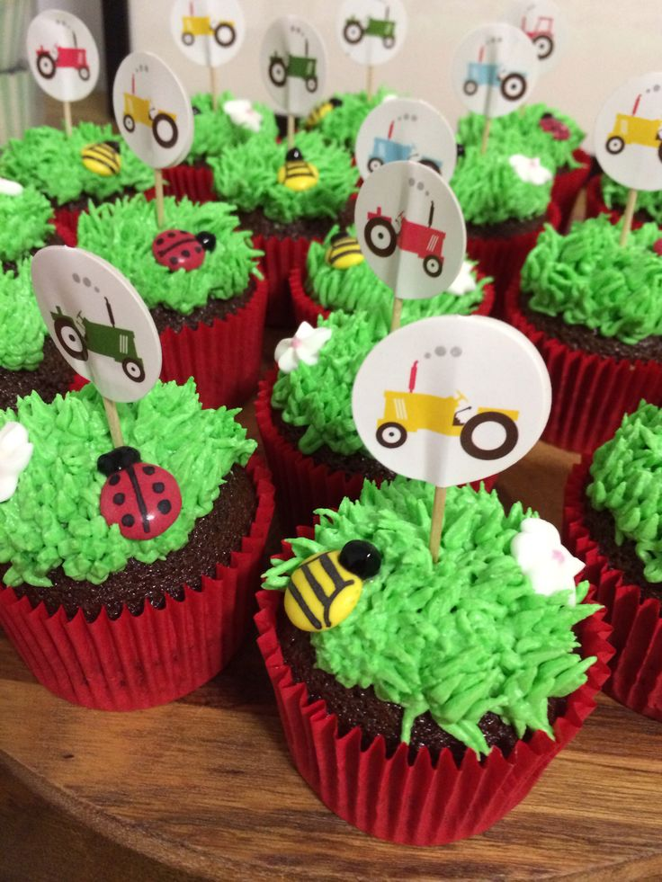 Farm themed cupcakes made by me.
