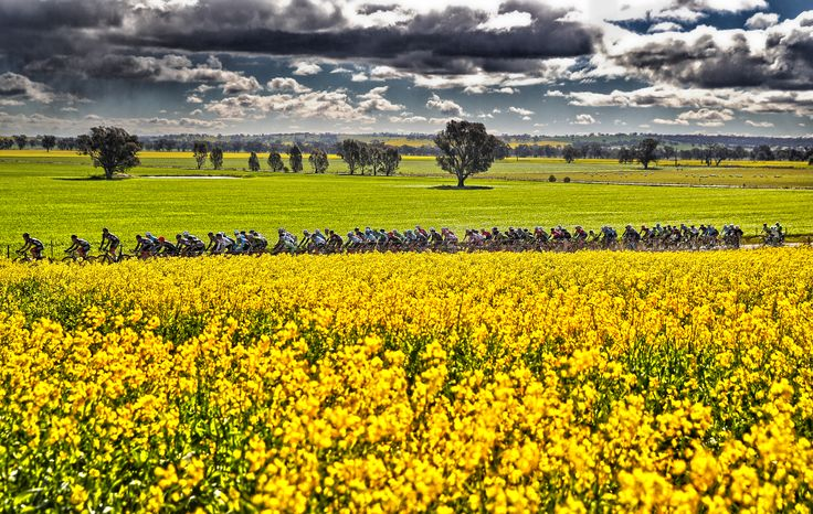 Australian National Road Series - King Valley Tour - Credit: Credit: Con Chronis