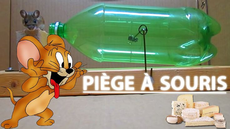 Piège à souris fait maison avec une bouteille en plastique et quelques accessoires