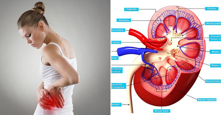 12+Symptoms+of+Kidney+Disease+That+You+Must+Know