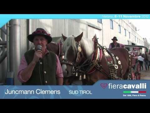 Intervista a Juncmann Clemens di Sud Tirol #fieracavalli