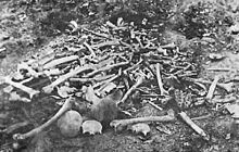 The remains of Armenians massacred at Erzinjan.