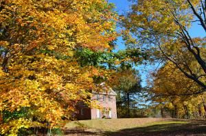 Get the Latest New England Fall Foliage Reports: Connecticut Fall Foliage Report