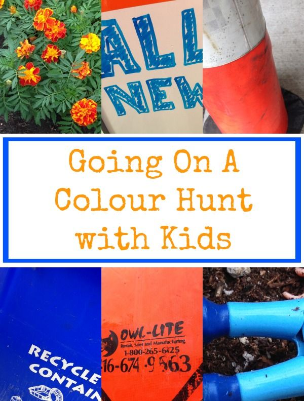A Color Hunt with Kids - A super simple learning and outdoor play activity for kids of all ages. Head outside in search of colour!