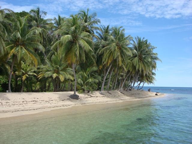 Isla Tagargandupu en San Blas (Panamá), hermosa y mágica por no  estar habitada, visitarla parece como estar en el paraíso, sólo palmeras y una playa blanca perfecta para acostarse a descansar y el mar cristalino ideal para nadar y practicar snorkell.