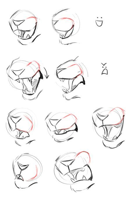 Drawing Reference Cat 31 Best Ideas