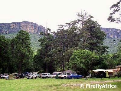 During our December camping holiday in the Drakensberg  we spent 10 days at the magnificent Mahai camp site in the Royal Natal National Park...