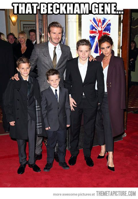 Beckham Family. Oh my goodness