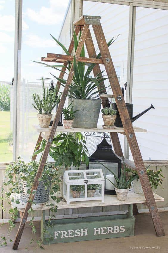 32 Wege zum besten Indoor-Kräutergarten
