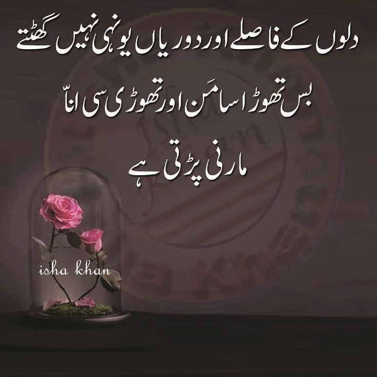 301 Best Urdu Quotes Images On Pinterest