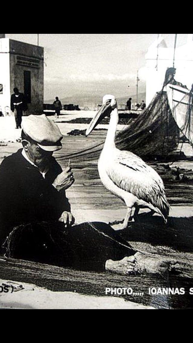 #Μykonos ,1960 by J.S.