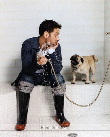 Paul Rudd AND a pug!?!? Can't get much cuter than that!