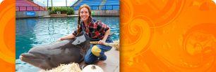 Monster Splash @ Miami Seaquarium.Hay maze, pumpkin patch, rides, dance party & More