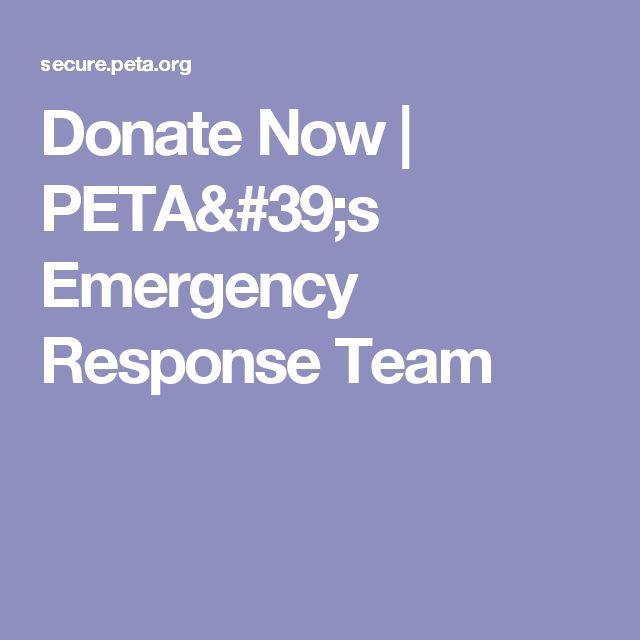 Donate Now | PETA's Emergency Response Team