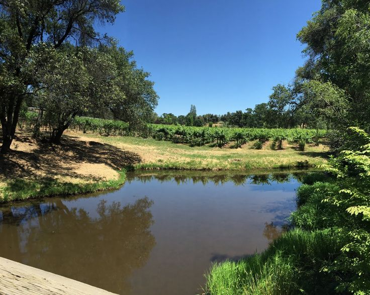 Spaswinefood: Ironstone Vineyards, the perfect Gold Country wine escape | spaswinefood