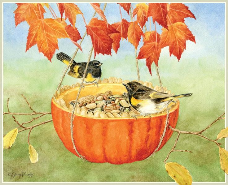 130 best images about birds on Pinterest | Lorraine ... |Fall Bird Paintings