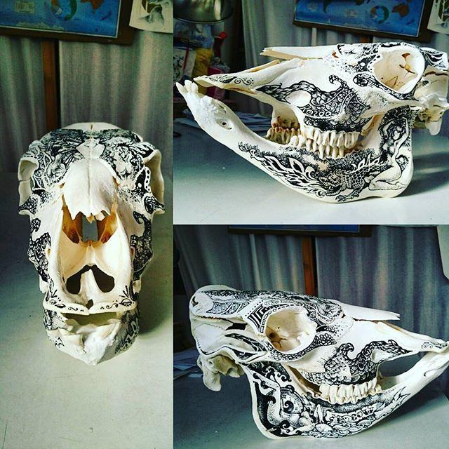 #cowskull #skullart #skulldesignarea51llanes #skullpainting #skulltattoo #taxidermy #homedecor #oddities #curiosity #bones #calavera #черепкоровы