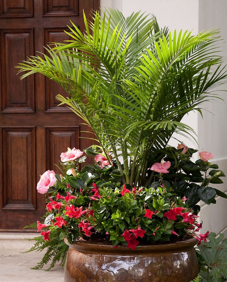 Charming Best 25+ Large Outdoor Planters Ideas On Pinterest | Big Planters, Large  Planters And Patio Planters