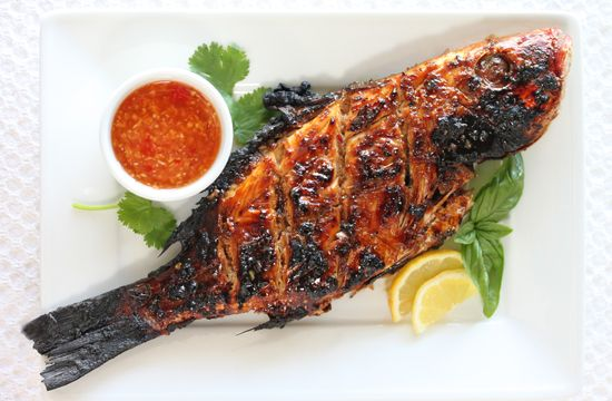 Panko Crusted Red Snapper with Roasted Chile Sauce
