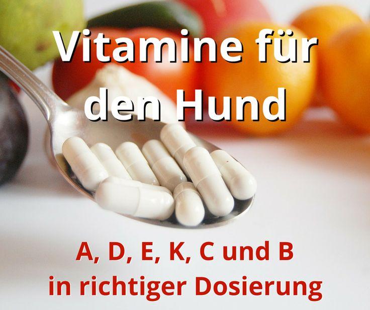 Vitamine sind für den Hund lebensnotwendig. Zu den wichtigsten Vitaminen A, D, E, K, C bis zum Vitamin B-Komplex finden Sie hier natürliche Nahrungsmittel als Vitamin-Lieferant und die Bedeutung für den Stoffwechsel erklärt.