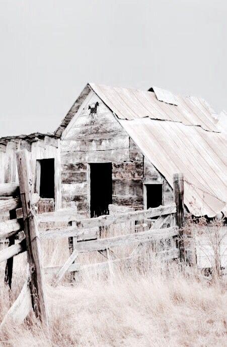 Shut The Barn Door