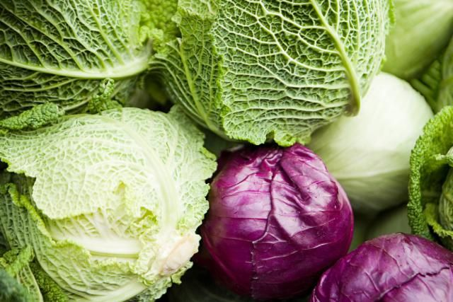 Cabbage for good luck on New Year's day or any day of the year. Get cooking tips and lots of cabbage recipes. Find out which herbs and vegetables are complementary to cabbage along with other cabbage cooking tips.