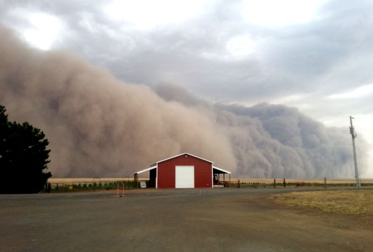 A massive, dramatic dust storm moves toward a barn near Harrington Wash., Tuesday Aug. 12, 2014. More often associated with the Southwest the dust storm blew through Eastern Washington and north Idaho on Tuesday evening in advance of thunderstorms, lightning and rain.
