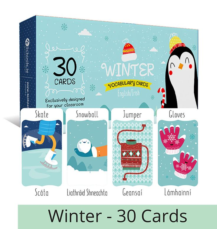 Vocabulary Cards | 4schools.ie | Student Diaries, Student Journals, School Websites, Homework Diary, School Maps of Ireland