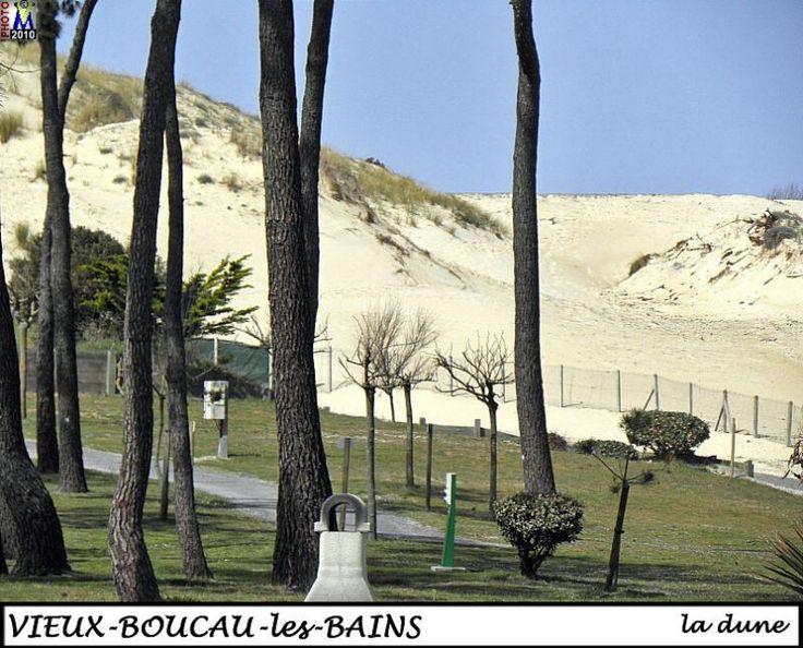 VIEUX-BOUCAU   ---   dune