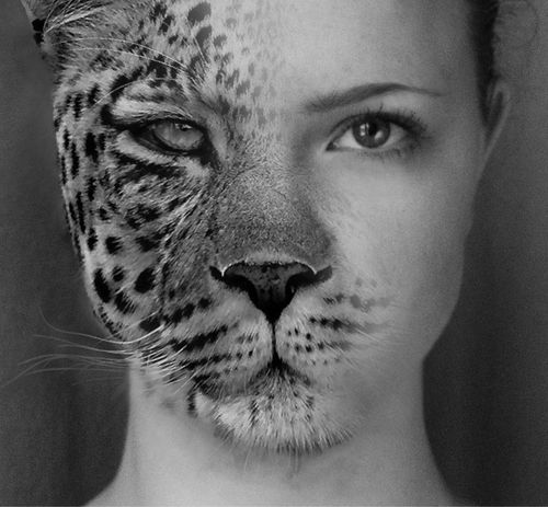 animals half human art - Google Search